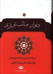 دیوان صائب تبریزی دوجلدی