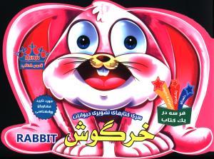 سری کتابهای تصویری حیوانات خرگوش داستان رنگ آمیزی فعالیت و سرگرمی