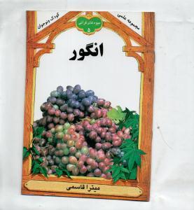 میوه های قرآنی(5)انگور